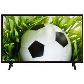 Televize Hyundai FLP 43T354 černá