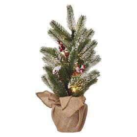 LED dekorace EMOS 20 LED vánoční stromek zasněžený, 52 cm, 3x AA, vnitřní, teplá bílá, časovač (DCTW04)