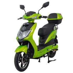 Elektrická motorka RACCEWAY E-FICHTL